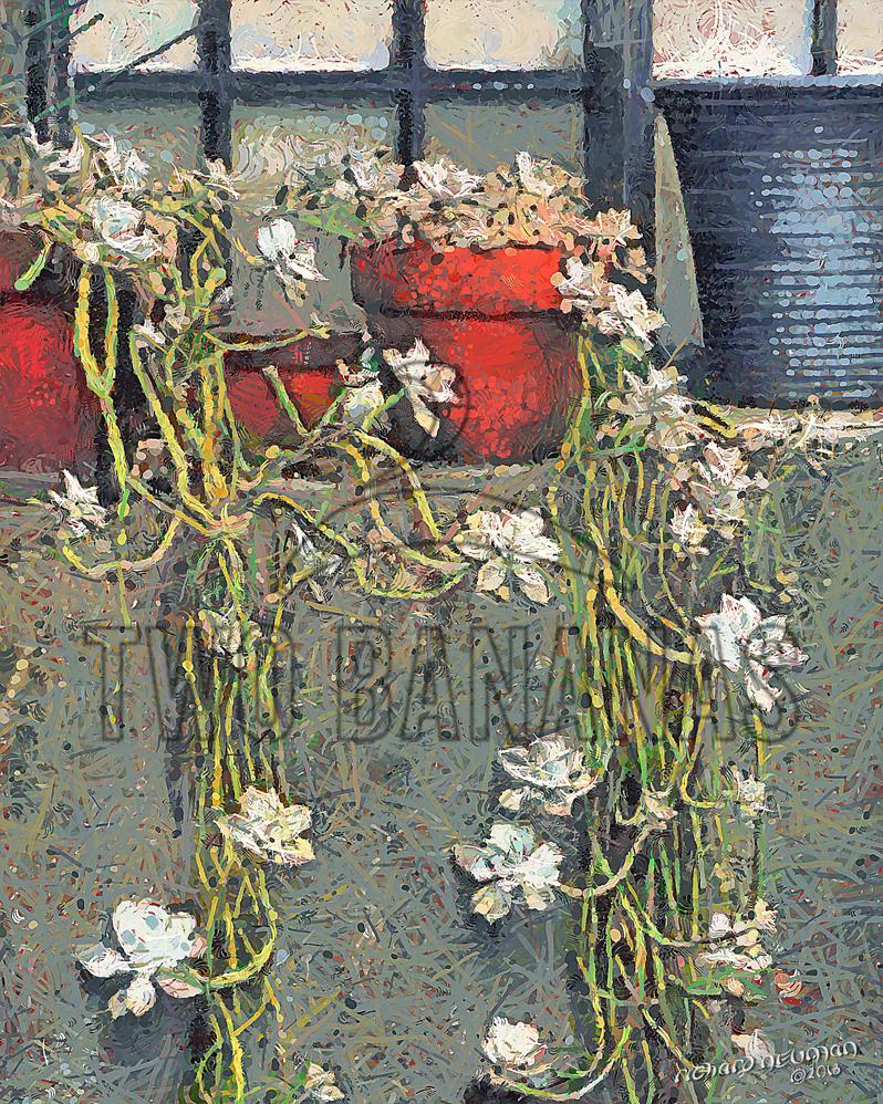 Potted Plants In Window Kyai Machi Dori Kyoto Japan Vietnam DIY Download Print Millennial Impressionist Richard Neuman Two Bananas Art