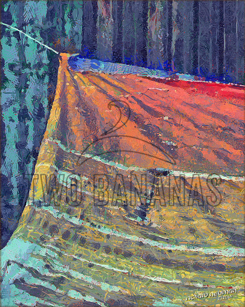 Remnant Us Military Base Bien Phuc Vietnam DIY Download Print Millennial Impressionist Richard Neuman Two Bananas Art