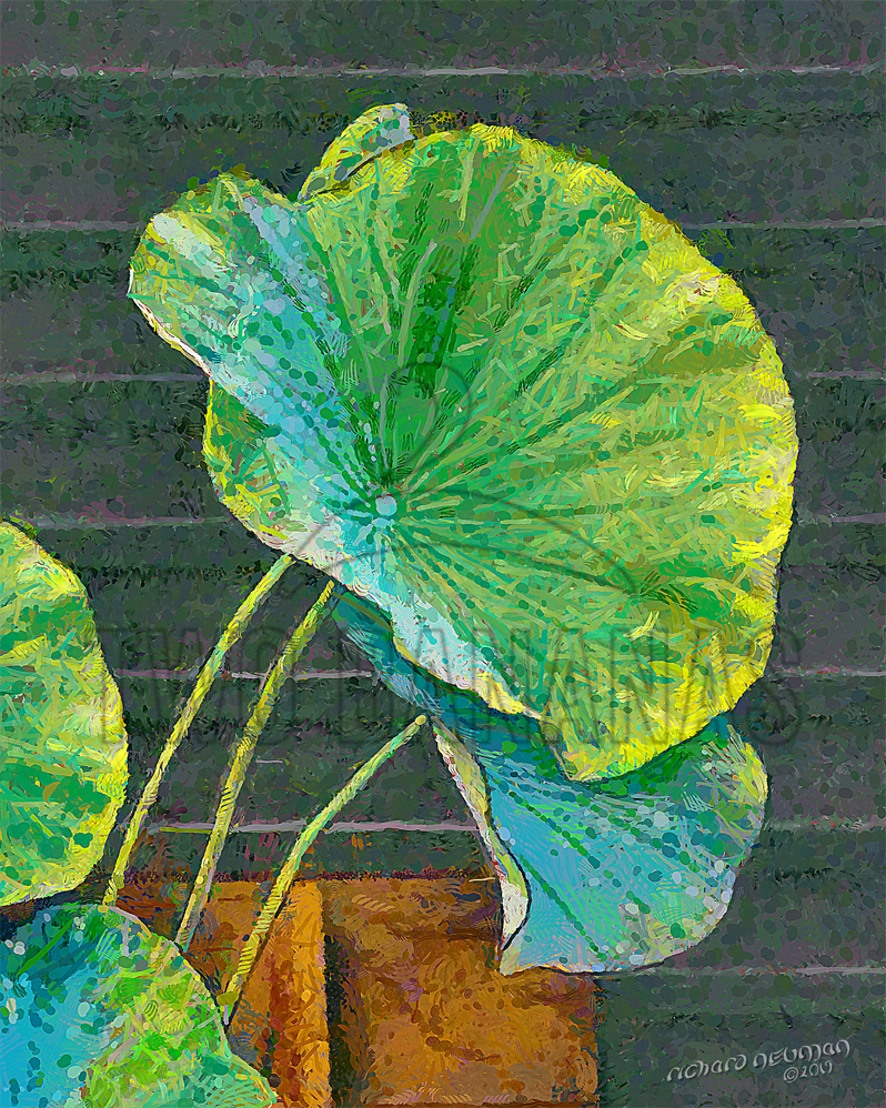 Sunlit Lotus Leaves Sumiyoshi Taisha Shrine Osaka Japan DIY Download Print Millennial Impressionist Richard Neuman Two Bananas Art